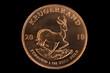 Rückseite Krugerrand Gold Münze Edelmetall