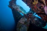 Fototapete Boot - Caribbean - Andere