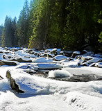 mountain river covered with snow