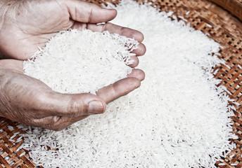 thai jasmine rice