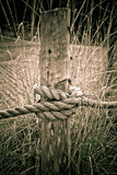 Rope around a log