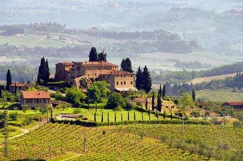 Leinwandbild Motiv Toskana Weingut - Tuscany vineyard 03