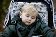 Portrait of a young boy sitting in a stroller, sleeping