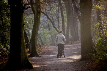 A young father pushing a stroller in the park, rear view