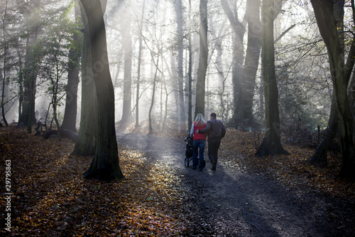 A young couple pushing a stroller in the park, rear view