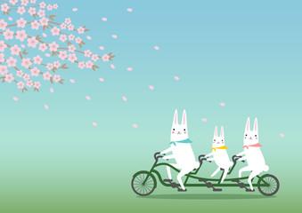 桜とウサギとサイクリング