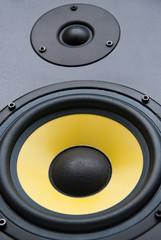 Speaker, close up
