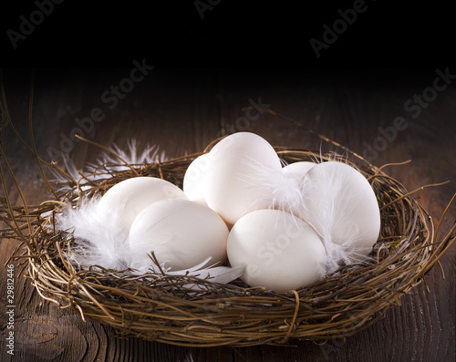 Eggs in a Nest. Financial Concept