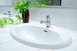Handbasin and vase in toilet