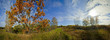 Panoramic landscape of sunny autumn field with forest river