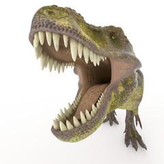 green tyrannosaurus big face zoom
