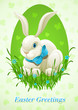 Easter bunny in egg vector