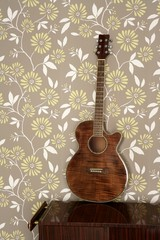 acoustic guitar retro on vintage 60s wallpaper