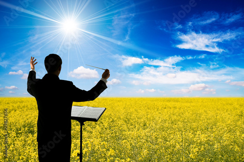 Conductor and oilseed field