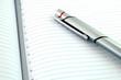 Silver Pen and New Agenda