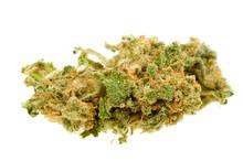 Zamknąć marihuany (Cannabis)