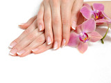 Fototapety Beautiful hand with perfect nail french manicure and purple orch