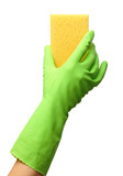 Hand in glove holding washing sponge
