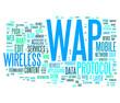 Wireless Application Protoco