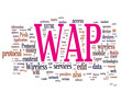 Wireless Application Protocol - WAP