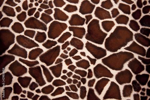 Giraffe Pelz
