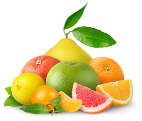 Beautiful citrus fruits