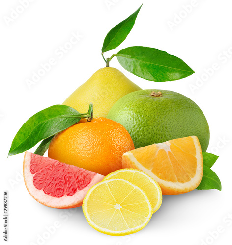 Beautiful citrus fruits