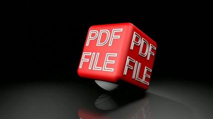 PDF FILE springt