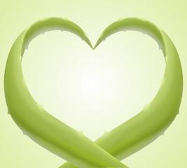 cuore aloe vera