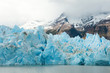 Blue icebergs and snowy mountains at Grey Glacier in Torres del