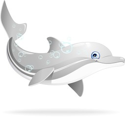 Delfino Cartoon-Dolphin Cartoon-Vector