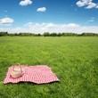 Outdoor picnic - 29923064