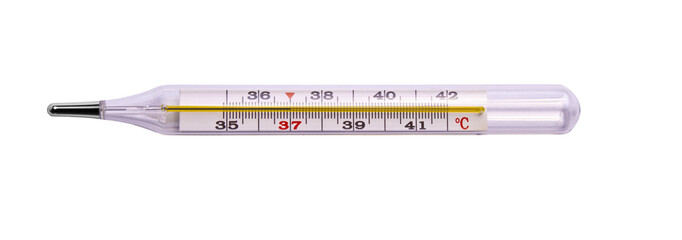 Thermometer isolated on the white background