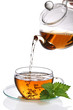 Cup of tea (clipping path included)