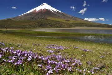 Vulcano Cotopaxi , Ecuador