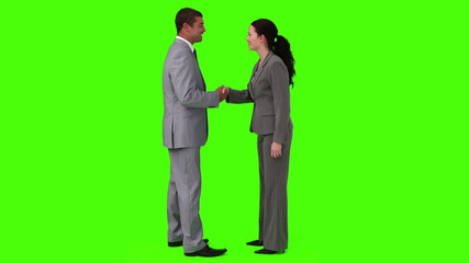 Businessman and a businesswoman having a meeting