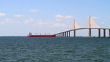 Freighter Skyway Bridge poster