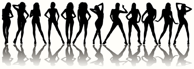 12 silhouettes of sexy women