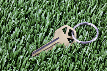 Key with keyring  laying in mown grass
