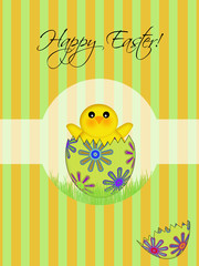 Happy Easter Chick Hatching Egg