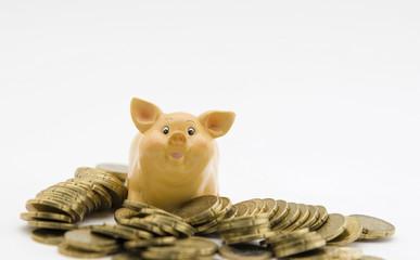 Sparschwein und Hartgeld