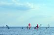 Surfers - 29966051