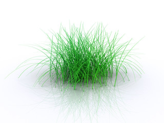 digital grass1