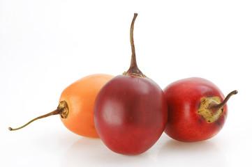 Solanum betaceum Tomate de arbol