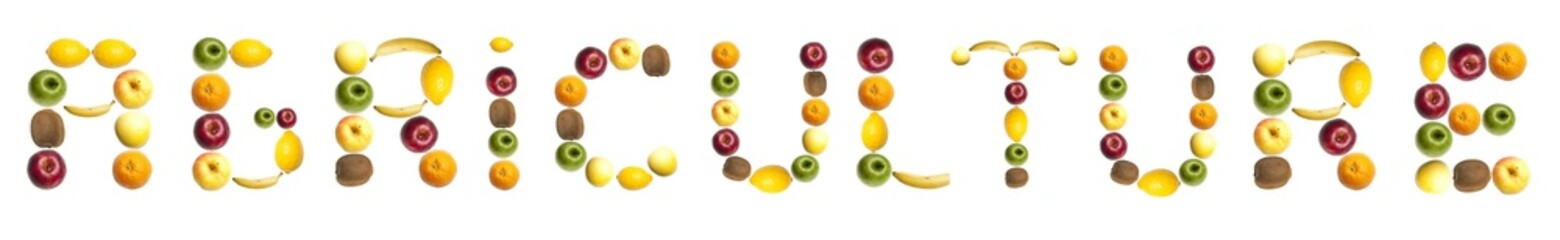 Agriculture word made of fruits