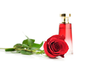 Rose perfume fragrance