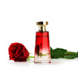 Perfume and rose on white