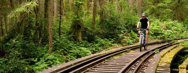 Cyclist on Railroad Tracks