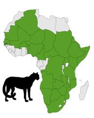 Gepard Vorkommen Afrika