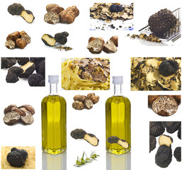 Collage di Tartufi - Collage of Truffles